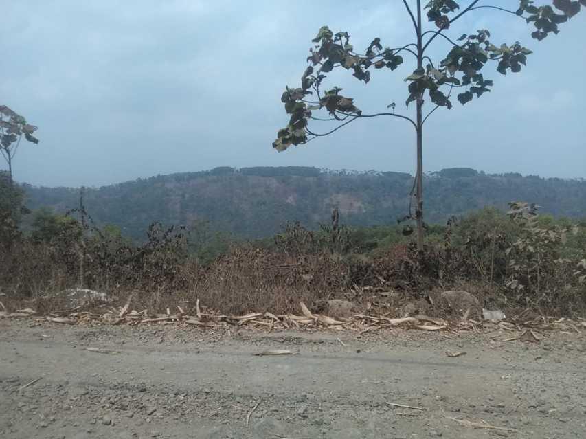 Tanah Murah Cocok Untuk Perkebunan Cirangkong Subang: di jual Tanah di Desa Cirangkong Kecamatan Cijambe, KABUPATEN SUBANG, JAWA BARAT